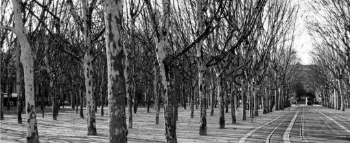 Bordeaux - Place des Quinconces